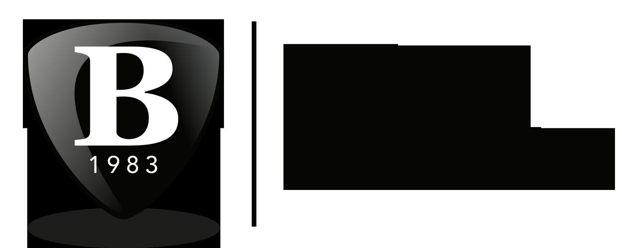 bork-logo-tekst-op-2-regels